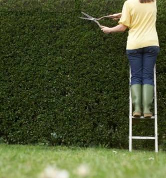 Seguridad en tu jardín