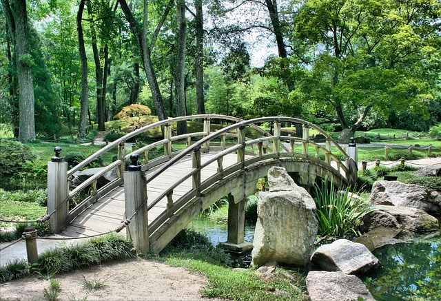 En jardinería y paisajismo también se avanza