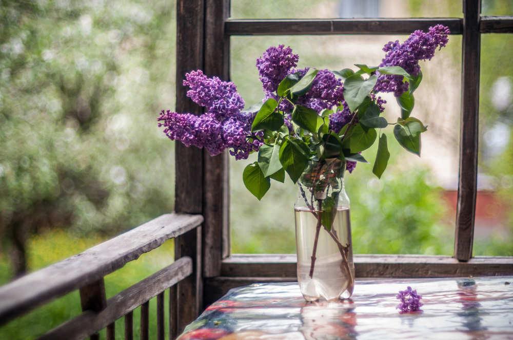 Ideas prácticas para diseñar tu porche en el jardín