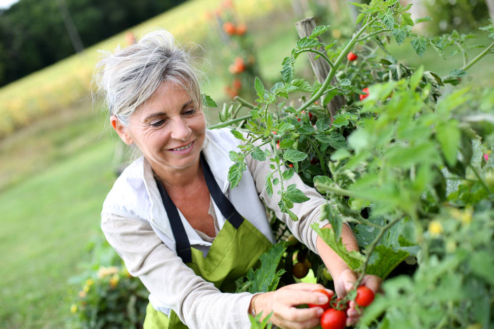 Los beneficios de los jardines para la salud mental de las personas mayores