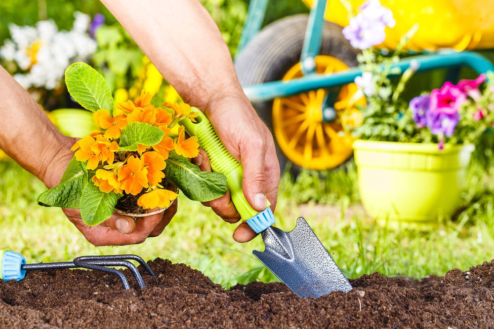 Herramientas imprescindibles en un jardín
