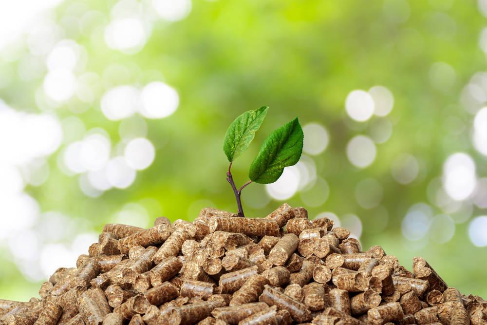 Los pellets, una forma económica y ecológica de calentar tu hogar